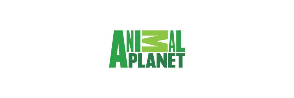 zielone logo animal-planet